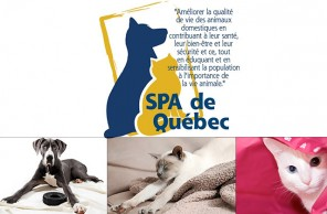 Québec SPA