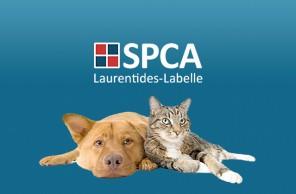 Laurentides-Labelle SPAC