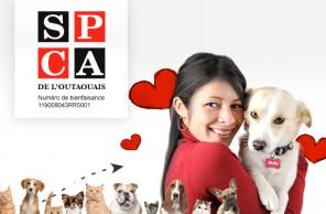 Outaouais SPCA