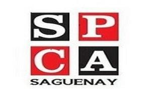 SPCA de Saguenay