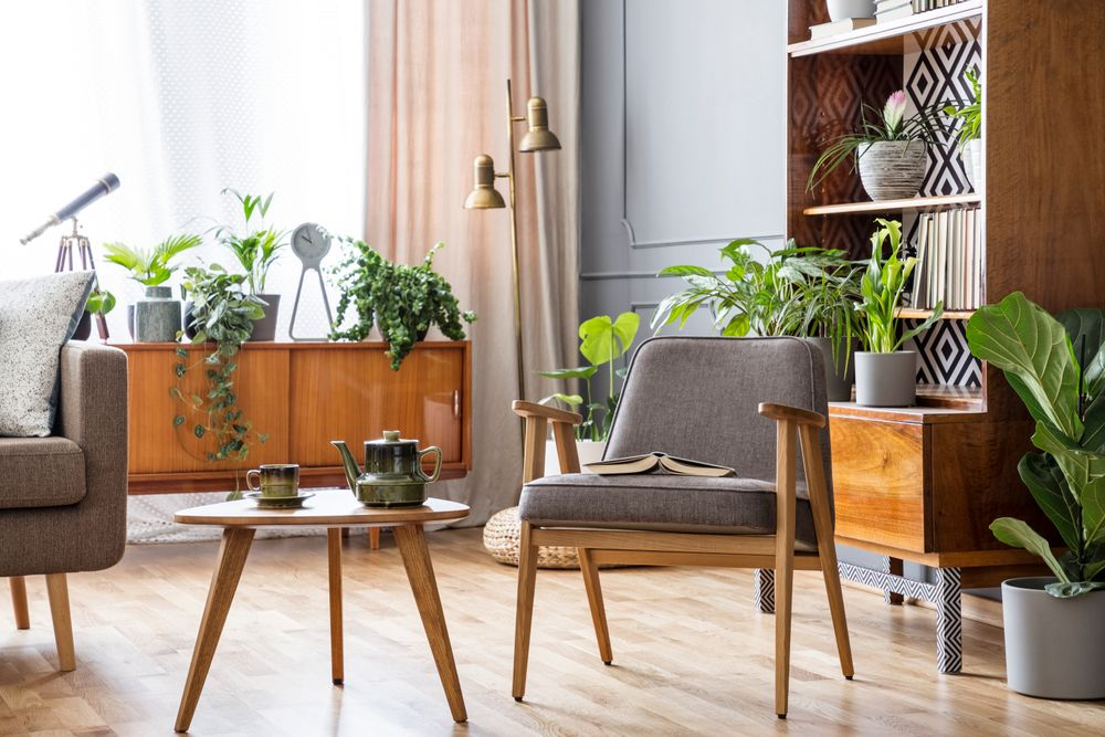 Salon style années 50 avec plantes