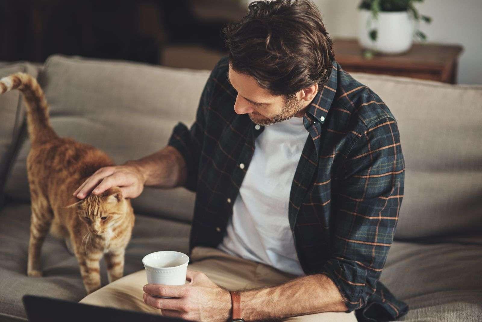 chat avec son maître divan
