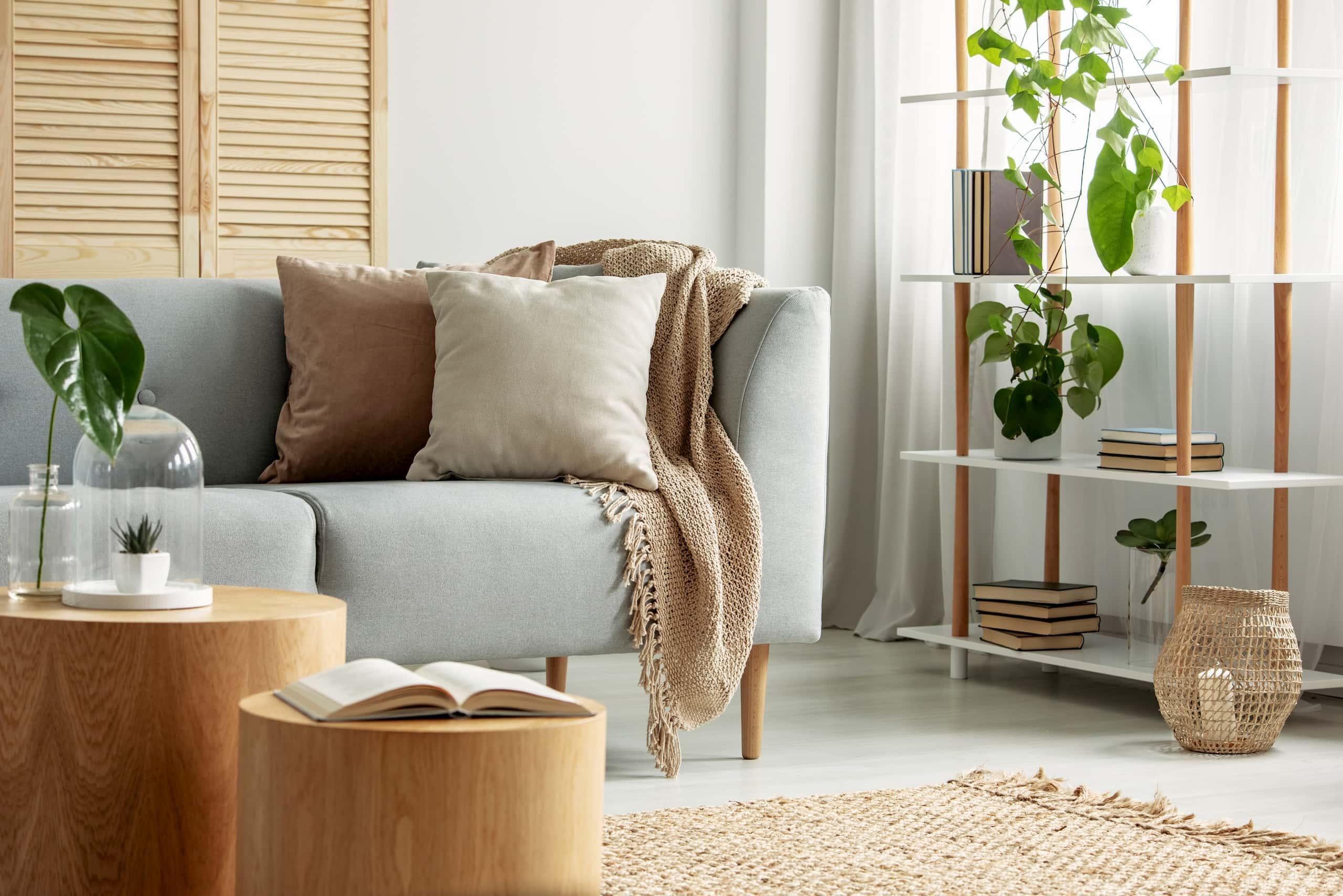 Décoration de salon contemporaine avec plantes et panier en osier
